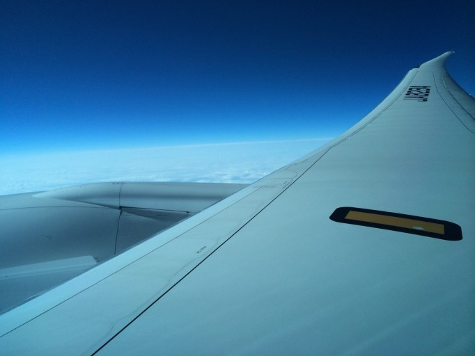 Vleugel van de ANA Boeing 787