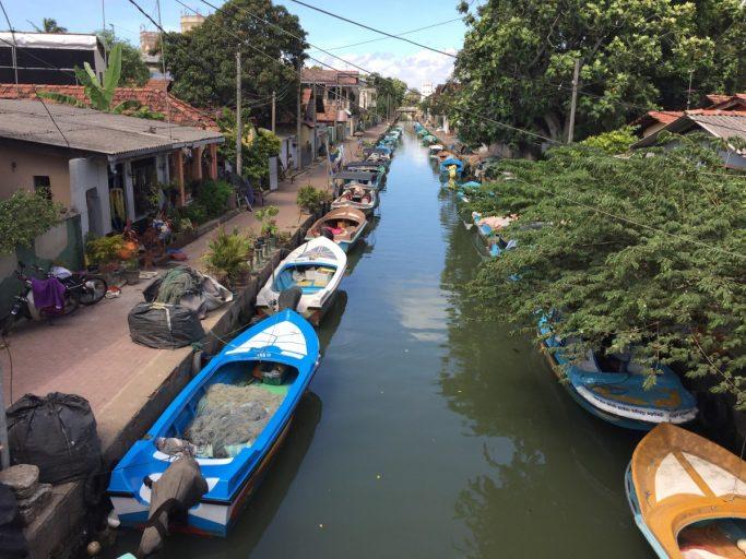 Vissersboten in Negombo - Sri Lanka