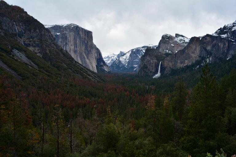 Yosemite, Los Angeles, San Francisco, Road trip, USA, Californie, VS
