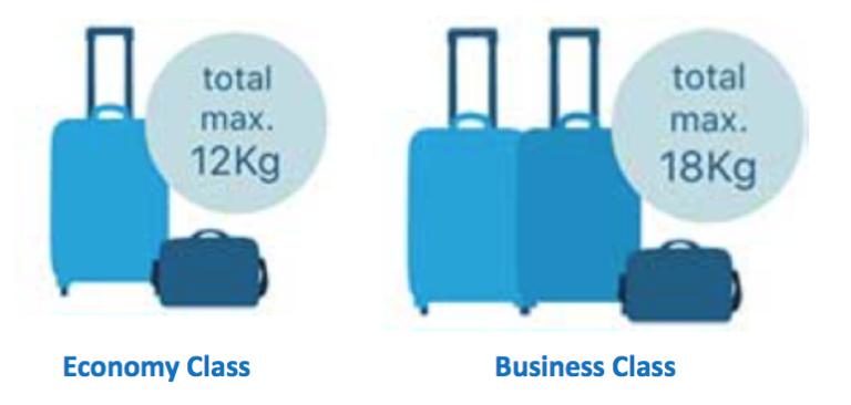 Klm flyg handbagage