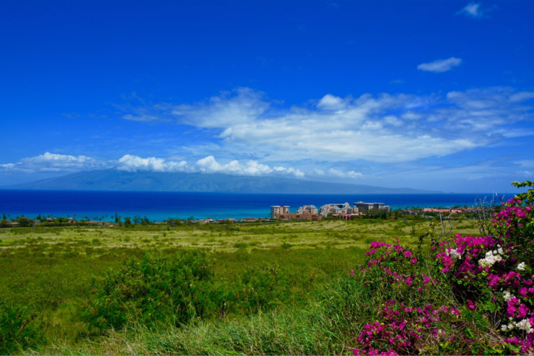 Maui, Hawaii, budgettips, Amerika, paradijs, roadtrip,