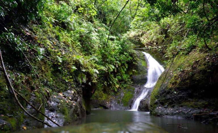 Cookeilanden, vakantie, paradijs, Rarotonga,
