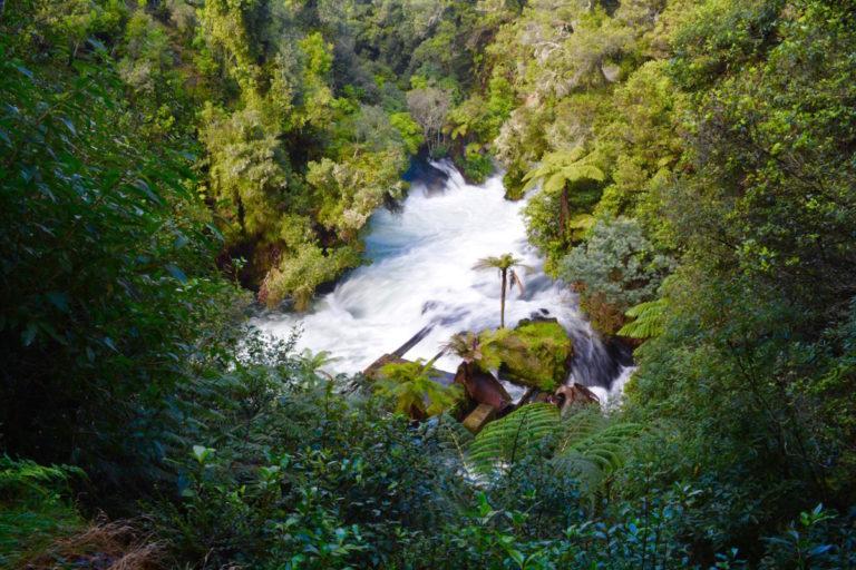Auckland, Coromandel, Rotorua, Nieuw-Zeeland, Noordereiland, road trip, bestemmingstips