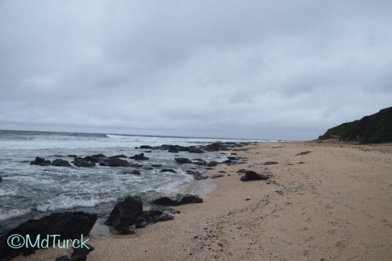 Genieten van het strand en zee in Jeffrey's Bay & Cape St. Frances