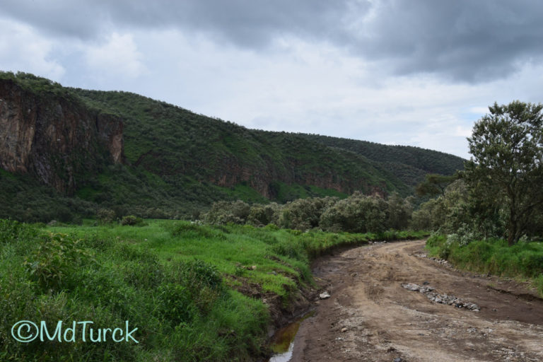Trip introductie – Safariland Kenia