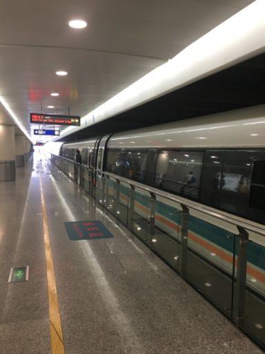Station waar je in-/uitstapt voor de Maglev trein