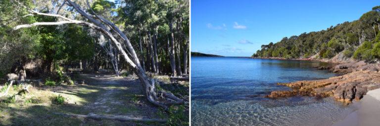 Bestemmingstips Eden, Omgeving & Review Eden Motel - Australië