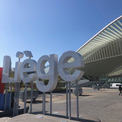 Liege Guillemins station.