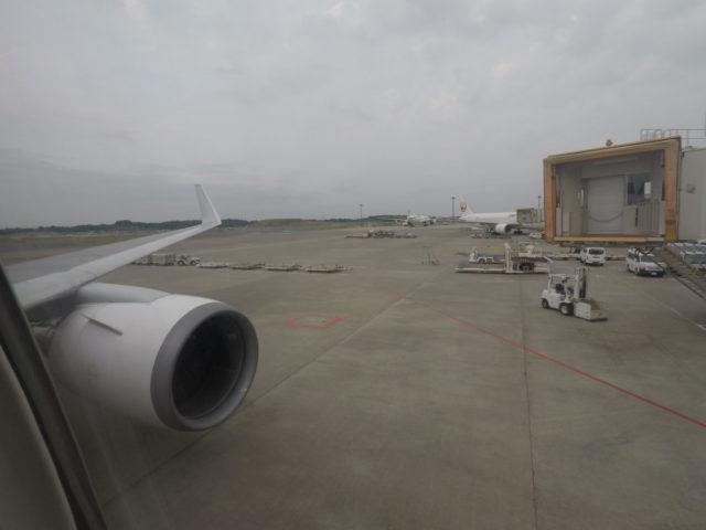 Japan airlines, gate, tokyo-narita