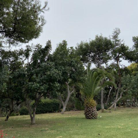 National Tuin van Athene