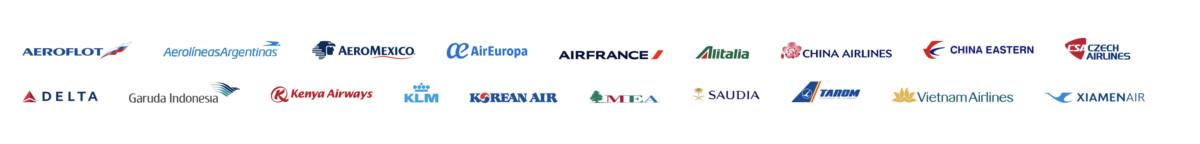 Luchtvaartalliantie SkyTeam kent momenteel 19 leden (Bron: SkyTeam)
